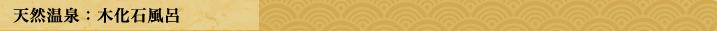 天然温泉:木化石風呂